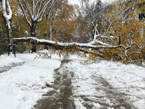 750,000 people trapped living in Winnipeg